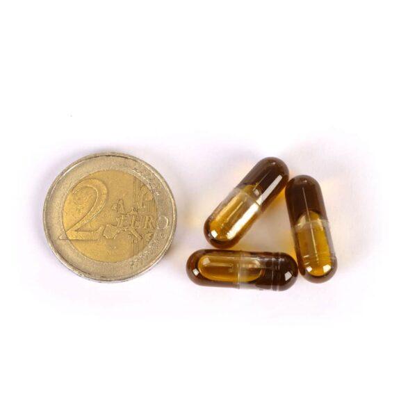 twee euro munt en drie Medihemp capsules